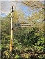 SX3868 : Signpost, Ashton by Derek Harper