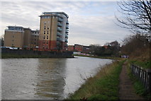 TM1543 : River Gipping by N Chadwick