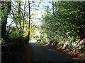 TQ4261 : Green Hill near Downe by Marathon