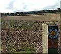 SJ2934 : Public footpath across a field near Gobowen by Jaggery