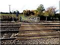 SJ2934 : Level crossing planks south of Weston Rhyn by Jaggery