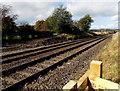 SJ2934 : Railway towards Weston Rhyn by Jaggery