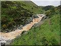 NT9625 : Careyburn Linn by Hugh Venables