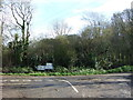 SX1551 : Country road junction and woodland by JThomas