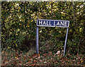TM1781 : Hall Lane sign by Adrian Cable