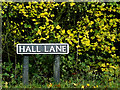 TM1982 : Hall Lane sign by Adrian Cable