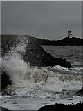 NT4999 : Elie Ness by Jackie Proven