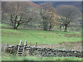 NY3225 : Ladder stile crossing dry stone wall north of Threlkeld by Trevor Littlewood