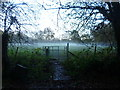 TQ9240 : Low lying mist in a field by Marathon