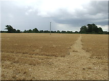TM1686 : Harvested Field by Keith Evans