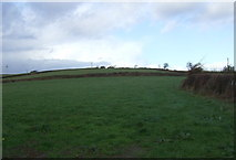 SX3257 : Grazing, Carracawn Cross by JThomas