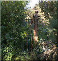J3634 : BWC gate near Castlewellan by Rossographer