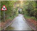TM1998 : View along Long Lane by Evelyn Simak