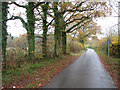 TM1998 : To Mulbarton on Long Lane by Evelyn Simak