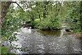 SK2565 : River Wye by Mick Garratt