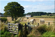 NZ3343 : Littletown Farm by Malcolm Coils