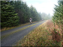 SN8449 : Head down, teeth gritted, nearly there... by Richard Law