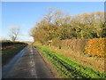 SE8947 : Kiplingcotes  Derby   Winning  Post  in  sight by Martin Dawes