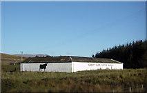 NN1880 : Great Glen Cattle Ranch by Peter Bond