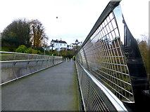 H4572 : Footbridge across the Drumragh River by Kenneth  Allen