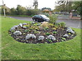 TM1478 : Scole & District Gardening Club Display by Adrian Cable