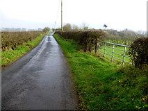 H5371 : Dreenan Road by Kenneth  Allen