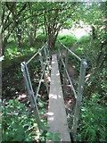 TQ4540 : Footbridge over stream by Matthew Chadwick