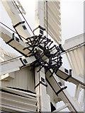TF1443 : A genuine arachnid by Alan Murray-Rust