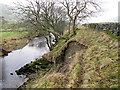SD9573 : Landslip on the banks of the Wharfe by Stephen Craven