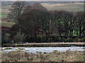 SD9865 : Surveyors on the Wharfe by Stephen Craven