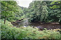 SE0656 : River Wharfe by Mick Garratt