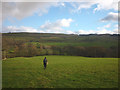 NY8311 : Footpath above Hocker Gill by Karl and Ali