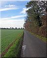 TL4543 : Along Grange Road by John Sutton