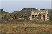 NU1341 : Free-ranging sheep and lime kilns by Pauline E