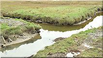 J4972 : Salt marsh, Strangford Lough, Newtownards - November 2014(1) by Albert Bridge