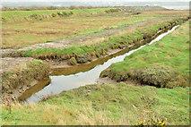J4972 : Salt marsh, Strangford Lough, Newtownards - November 2014(2) by Albert Bridge