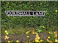 TM1986 : Guildhall Lane sign by Adrian Cable