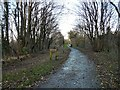 SJ9493 : Trans Pennine Trail at Apethorn by Gerald England