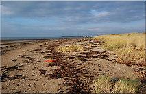 NS3229 : On The Ayrshire Coastal Path by Mary and Angus Hogg