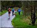 H4772 : Activity along the Highway to Health path, Mullaghmore by Kenneth  Allen