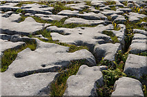 M2300 : Limestone pavement by Ian Capper
