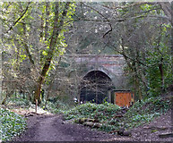 TQ3472 : Crescent Wood Tunnel, Sydenham Hill Woods by Stephen Richards