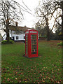 TM1178 : Palgrave Telephone Box by Adrian Cable