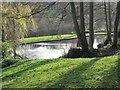 SE0819 : Lake - Shaw Park - off Shaw Lane by Betty Longbottom