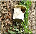 J3876 : Bird box, Knocknagoney Park, Belfast (December 2014) by Albert Bridge