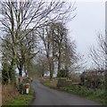 SJ4332 : Fine stonework on a bridge on a minor road near Colemere by David Smith