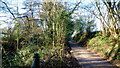 ST4096 : Nant-y-banw Lane by Jonathan Billinger