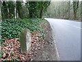 SE1410 : Old milestone, Woodhead Road by Humphrey Bolton
