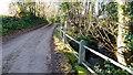ST3995 : Llwynau Lane and Brook by Jonathan Billinger