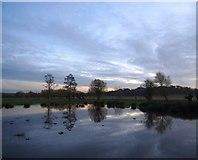 TQ2173 : Evening sky over Richmond Park, December 2014 by Stefan Czapski